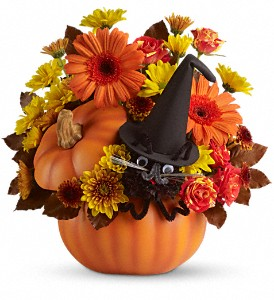 Teleflora's Bewitched Cat Bouquet in Oklahoma City OK, Array of Flowers & Gifts