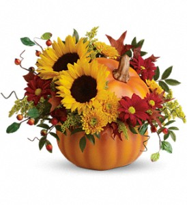 Teleflora's Pretty Pumpkin Bouquet in Commerce Twp. MI, Bella Rose Flower Market