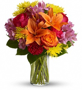 Bright Smiles in New Port Richey FL, Holiday Florist