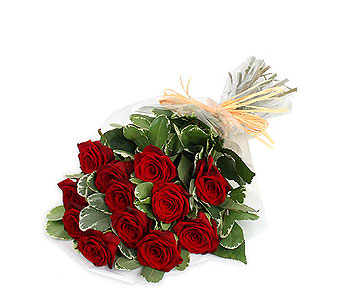 Dozen Long Stem Premium Red Roses in Ajax ON, Reed's Florist Ltd