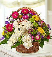 Barkin' Blooms in Wichita KS, The Flower Factory, Inc.