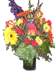 Dreaming in Color Bouquet in Lake Charles LA, A Daisy A Day Flowers & Gifts, Inc.