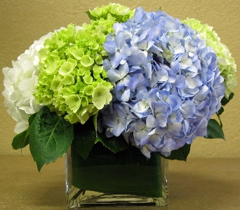 Classically Awesome in Delray Beach FL, Delray Beach Florist