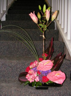 Pink Zensation in Lake Charles LA, A Daisy A Day Flowers & Gifts, Inc.