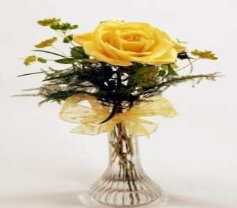 Single Stem Yellow Rose Local and Nationwide Guaranteed Delivery - GoFlorist.com