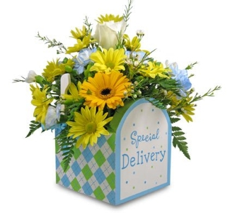 Special Delivery - Boy in Cleves OH, Nature Nook Florist & Wine Shop
