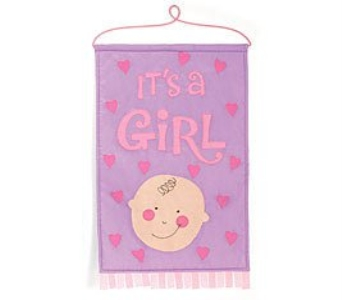It''s A Girl Banner in Cleves OH, Nature Nook Florist & Wine Shop