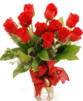 'Get Shorty' Red Dozen Local and Nationwide Guaranteed Delivery - GoFlorist.com