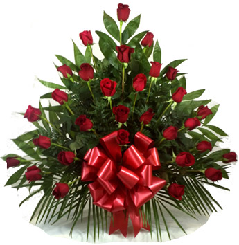 Premium Red Rose Sympathy Basket in Chicagoland IL, Amling's Flowerland