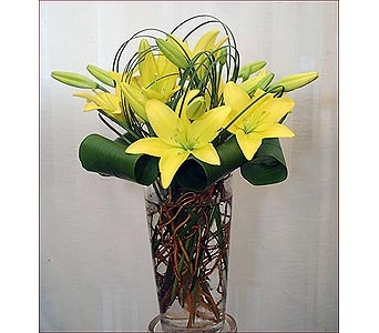 Yellow lilies in San Antonio TX, Blooming Creations Florist