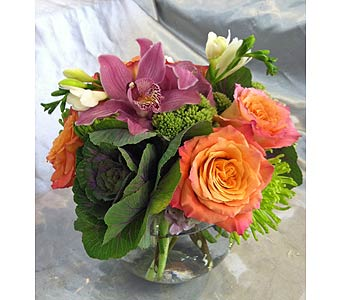 EFFORTLESS BEAUTY in Santa Monica CA, Santa Monica Florist