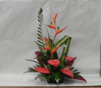 Tropical Arrangement in Mililani Town HI, Mililani Town Florist