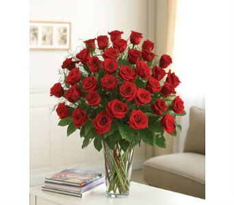 Three Dozen Red Roses in Perrysburg & Toledo OH  OH, Ken's Flower Shops