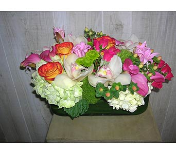 Bundle of Love in Dallas TX, Petals & Stems Florist
