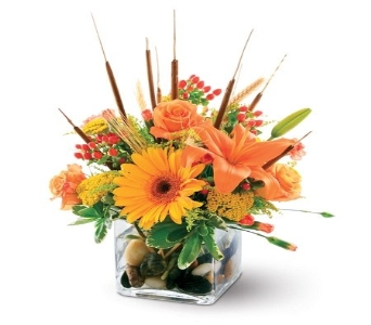 Fall Escape in El Paso TX, Kern Place Florist