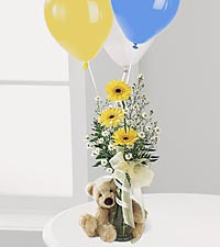 Gerbera Daisy & Bear Bouq in Mooresville NC, All Occasions Florist & Boutique<br>704.799.0474
