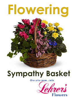 Flowering Sympathy Basket in Denver CO, Lehrer's Flowers