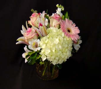 It''s a Girl! in Grapevine TX, City Florist