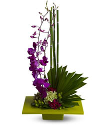 Zen Artistry Flowers in New York NY, CitiFloral Inc.