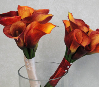 Mango Calla Lilies in Baltimore MD, The Flower Cart, Inc
