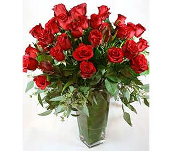 Red Rose Elegance in Campbell CA, Citti's Florists