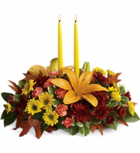Celebrate Together in Rock Island IL, Colman Florist