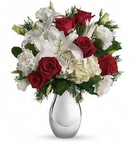 Teleflora's Silver Noel Bouquet in Brunswick GA, The Flower Basket