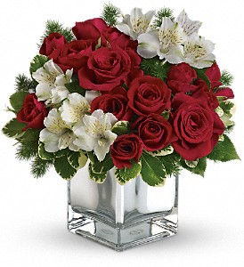Teleflora's Christmas Blush Bouquet in Flint MI, Curtis Flower Shop