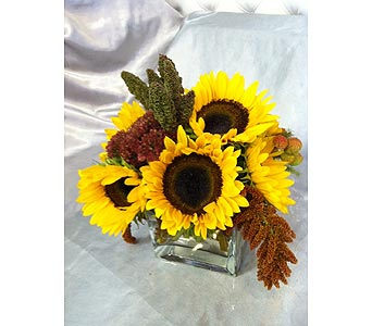 Sunflower Pleasures 2 in Santa Monica CA, Santa Monica Florist