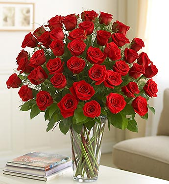 Three Dozen Roses - Choose Your Color in Bradenton FL, Ms. Scarlett's Flowers & Gifts