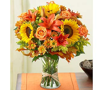 Fall Field of Euro in Mooresville NC, All Occasions Florist & Boutique