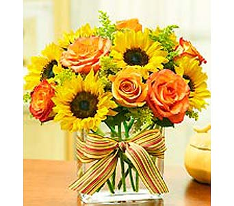 Modern Enchantment Fall in Mooresville NC, All Occasions Florist & Boutique