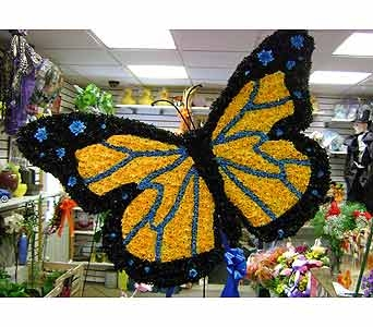 BUTTERFLY in Brooklyn NY, David Shannon Florist & Nursery