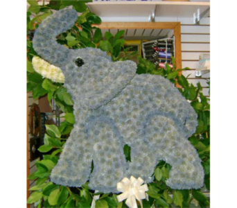 ELEPHANT in Brooklyn NY, David Shannon Florist & Nursery