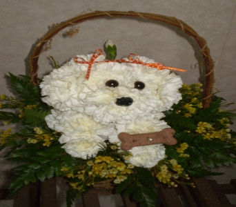 Our Pet DOG-ABLE in Hanover PA, Country Manor Florist