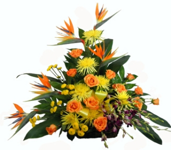 Birds and Roses Tropical Basket in Indianapolis IN, Berkshire Florist