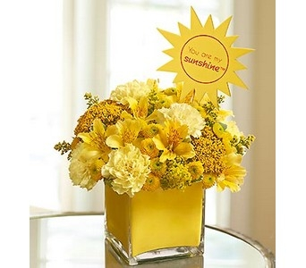 You Are My Sunshine�  in Concord CA, Jory's Flowers