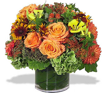 October Surprise in New York NY, Fellan Florists Floral Galleria