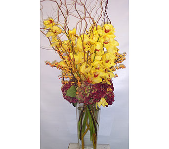 Cymbidium Orchids with Willow in New York NY, Fellan Florists Floral Galleria