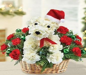 SANTA PAWS Basket in Port Charlotte FL, Punta Gorda Florist Inc.