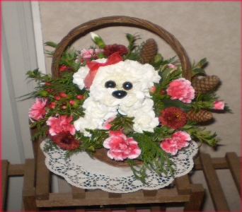 A Holiday Puppy in Hanover PA, Country Manor Florist