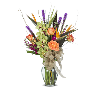 TROPICAL EXPRESSIONS in Gainesville FL, Floral Expressions Florist