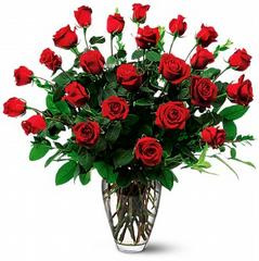 Two Dozen Red Roses in Santa Clara CA, Citti's Florists