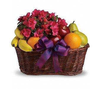 Send Food Gourmet And Gift Baskets In Princeton Plainsboro Trenton NJ