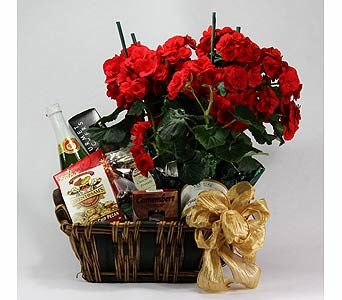Gourmet Basket with Begonia in Towson MD, Radebaugh Florist and Greenhouses
