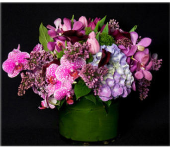 NYC Orchid Passion in New York NY, Starbright Floral Design