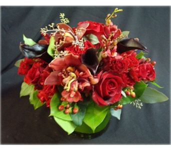 Red Passion in New York NY, Starbright Floral Design