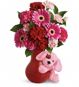 Teleflora's Send a Hug Sweetheart in San Jose CA, Rosies & Posies Downtown