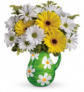 Teleflora's Darling Daisies Bouquet in San Marcos CA, Angel's Flowers