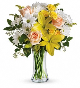 Teleflora's Daisies and Sunbeams in Fontana CA, Mullens Flowers